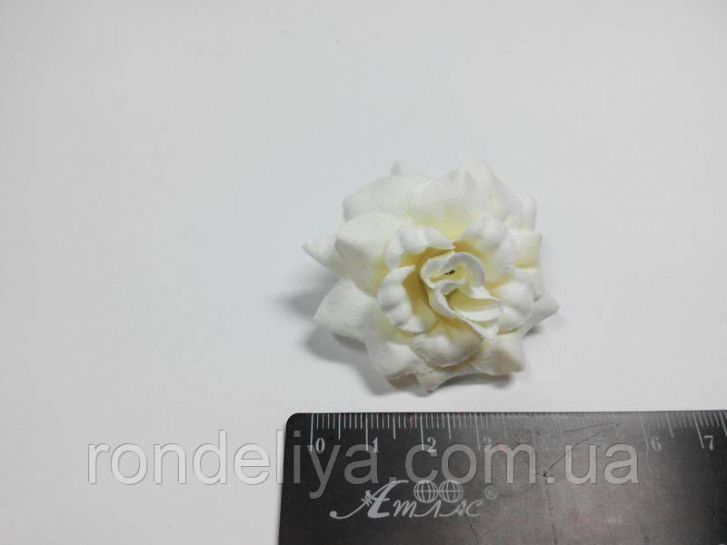 Цветок маленький айвори