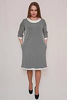 Платье в горошек тем синее, мод 548, размеры 54,56,58