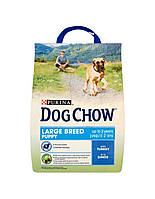 PURINA Dog Chow Puppy large breed Индейка 2.5 kg
