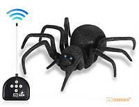 Паук черная вдова Black Widow Spider на пульте управления, радиоуправляемый паук, большой игрушечной паук