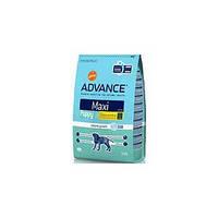 Advance (Эдванс) Сухой корм для немецкой овчарки Maxi 12кг