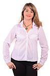 Белая блузка рубашка кофточка из хлопка .Бл 001-3, фото 2