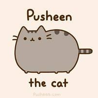 Мягкие игрушки коты Пушины из Facebook