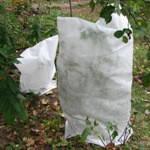 Чехлы для защиты растений 5 шт. 80х60 см.