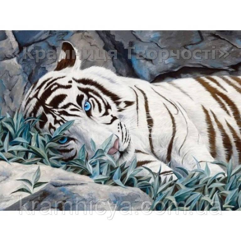 Картина по номерам Белый тигр, 40х50см (КН2453)