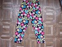 Детские летние лосины для девочек 1-5 лет хлопок Турция