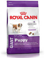 Сухий корм для собак ROYAL CANIN Giant puppy 15 кг, фото 1