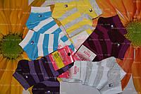 Носки демисезонные, р.36-39 (23-25). хлопок. Украинские носки.