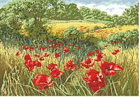 Рисунок на канве для вышивки нитками мулине 81653 Маки в поле