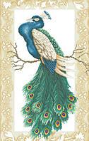 Рисунок на канве для вышивки нитками мулине 62393 Павлин