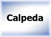 Насосы поверхностные Calpeda
