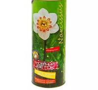 Бисерный цветок Нарцисс