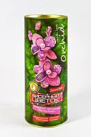 Бисерный цветок Орхидея