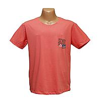 Мужская футболка большие размеры ОПТОМ Турция 2220-6