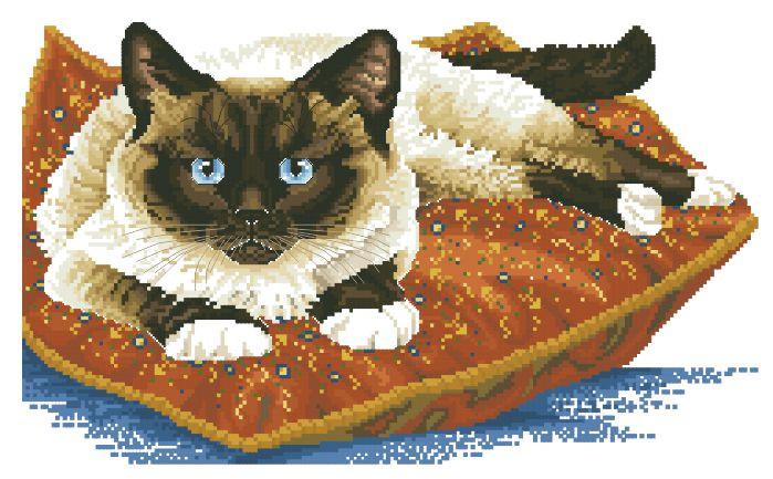 Рисунок на канве для вышивки нитками 40672 Сиамский кот