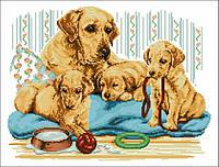 Рисунок на канве для вышивки нитками 50822 Золотой ретривер