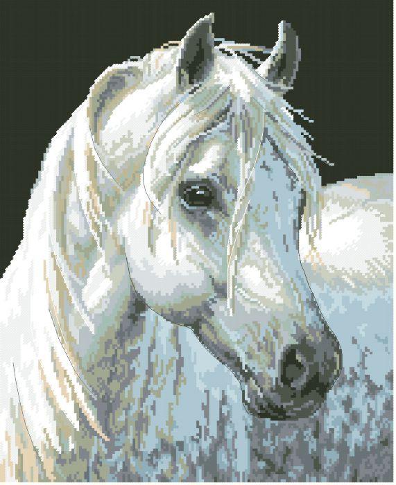 Рисунок на канве для вышивки нитками 10172 Лошадь