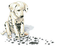 Рисунок на канве для вышивки нитками 81962 Маленький далматинец
