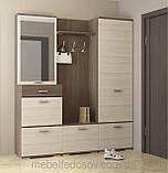 Шкаф 600 Вива  (Сокме) 600х370х2060мм, фото 3