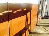 Металевий сайдинг (Стальпанель), золотий дуб, горіх, венге, вільха,Одеса, фото 2