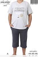 Костюм домашний мужской футболка и бриджи с карманами