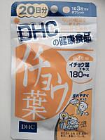 DHC Гинкго Билоба ( Гинко Билоба) Япония, 60 капсул (на 20 дней)