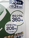 Кальций + Магний. Курс - 60 капсул на 20 дней. DHC, Япония, фото 2