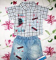 Костюм детский для мальчика, с рубашкой