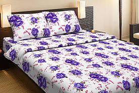 Постельное белье Lotus Ranforce Life Collection Agnes фиолетовый евро размера