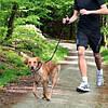 Trixie  Jogging Leash TX-12764 поводок для бега