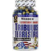 Tribulus Terrestris   240 капс