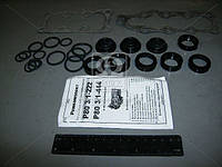 Ремкомплект гидрораспределителя Р-80-3/1-222 (с пластм. кольцами) (Украина). Ремкомплект-302