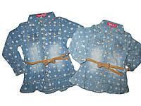 Джинсовая рубашка для девочек, размеры 86,92,98, 104,110 S&D. арт. KK-538