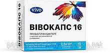 Пробиотики ВИВОКАПС 16