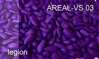 Краситель для семян фиолетовый  AREAL–VS 03