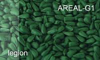 Краситель для семян зеленый  AREAL–G 1