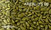 Краситель для семян желтый  AREAL–YS 06
