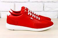Женские кроссовки красные с комбинированной кожи Lacoste с белыми шнурками и белой подошве