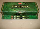 Eucalyptus Hem, фото 2