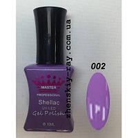 Гель-лак Master Professional Purple System 10мл №2