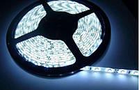 Светодиодная лента SMD5050 герметичная белый