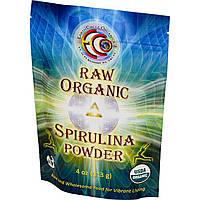 Спирулина натуральная, порошок, Earth Circle Organics, 113 грамм