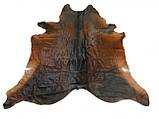 Шкура шоколадного кольору з рудими боками в інтер'єр, фото 3