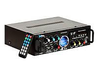 Sky Sound SM-088a (2*60W)