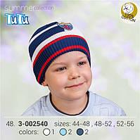 Шапка для мальчика TuTu арт. 3-002540