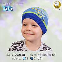 Шапка для мальчика TuTu арт. 3-002538