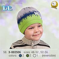 Шапка для мальчика TuTu арт. 3-002506