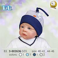 Шапка для мальчика арт. 3-002636