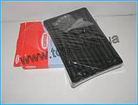 Комплект болтов ГБЦ  на Renault Trafic II 1.9DCi  Corteco(Италия) 016710B