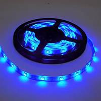 Светодиодная лента SMD5050 Синяя